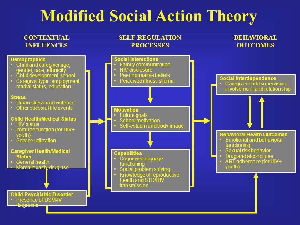 Modified Social Action Theory