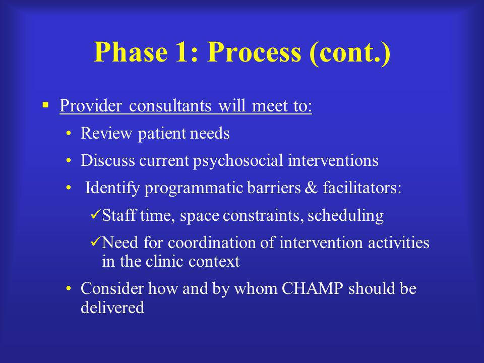 Phase 1: Process (cont.) Provider consultants will meet to: