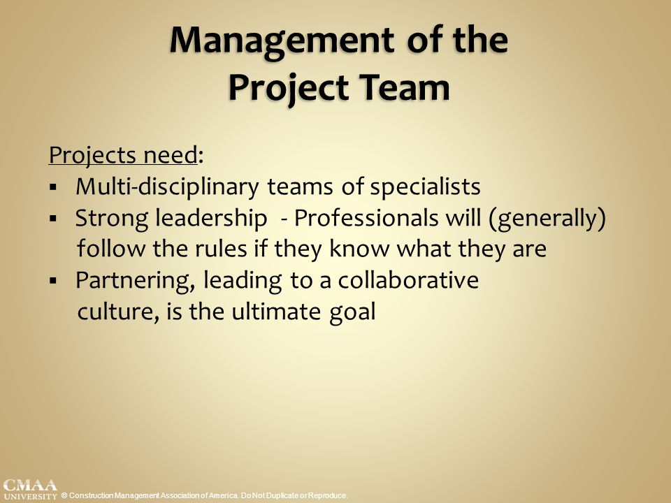 Management of the Project Team