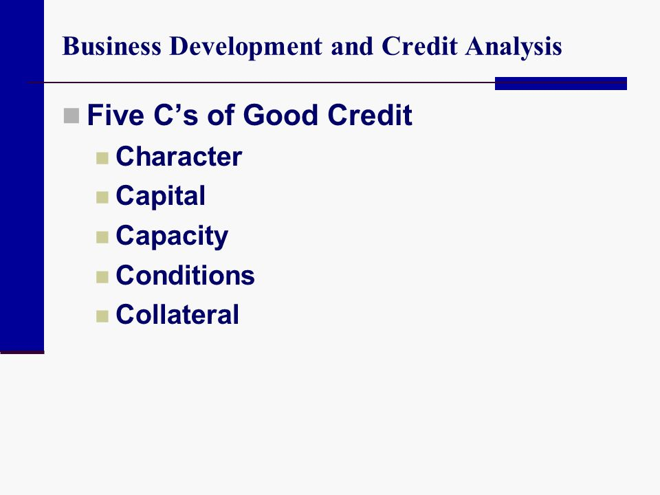 Business Development and Credit Analysis