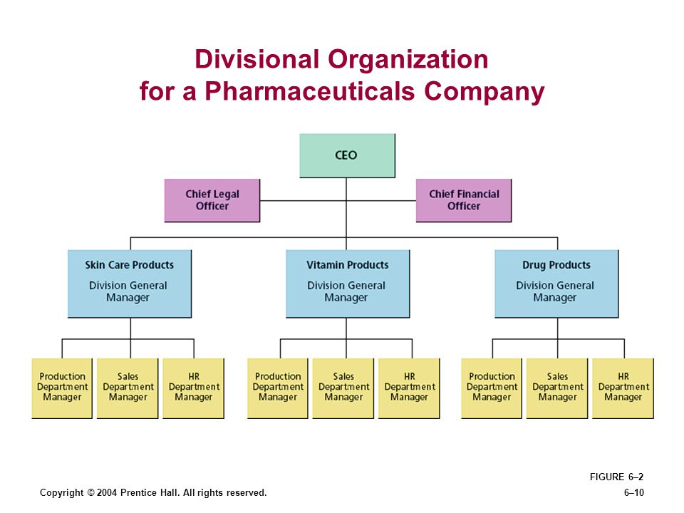 Divisional Organization for a Pharmaceuticals Company