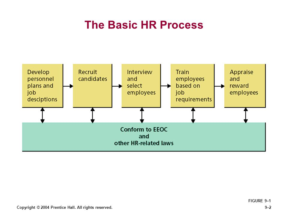 The Basic HR Process FIGURE 9–1