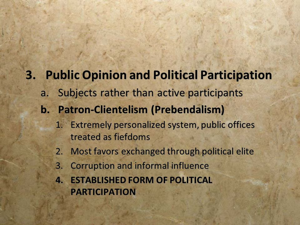 Public Opinion and Political Participation