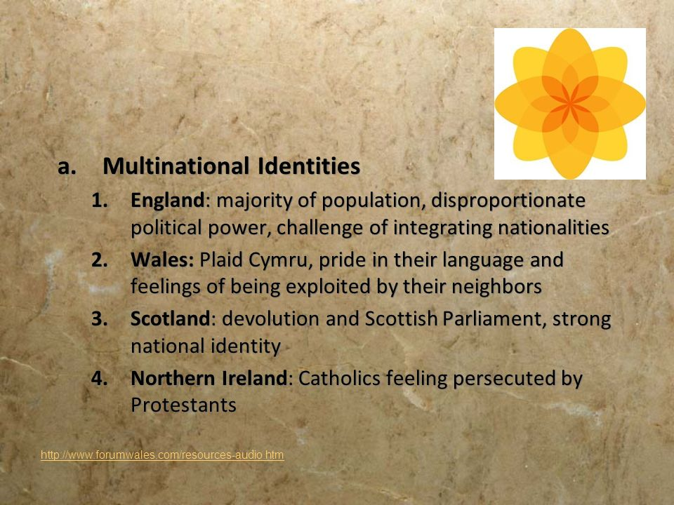 Multinational Identities