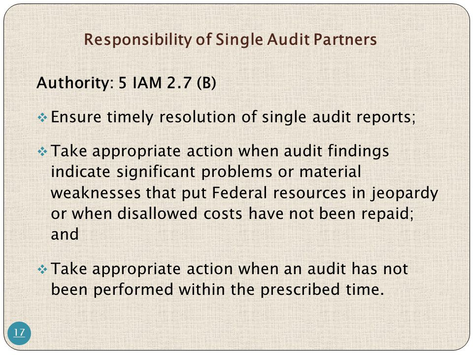 Responsibility of Single Audit Partners