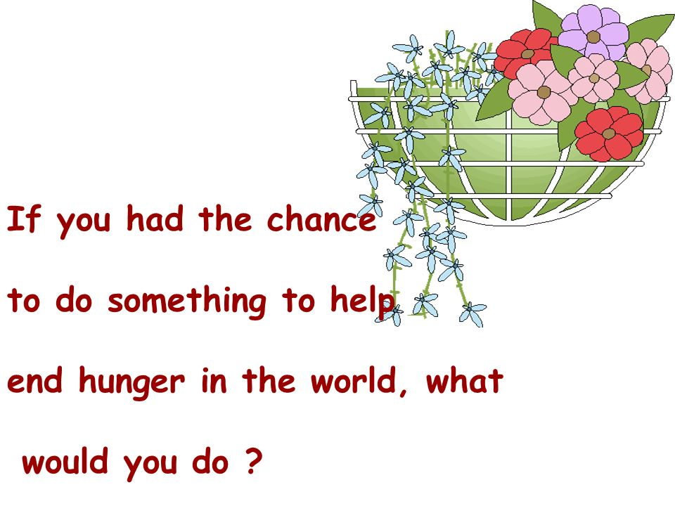 If you had the chance to do something to help end hunger in the world, what would you do