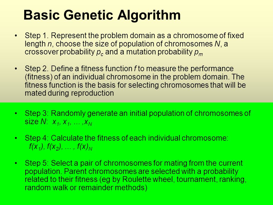 Basic Genetic Algorithm