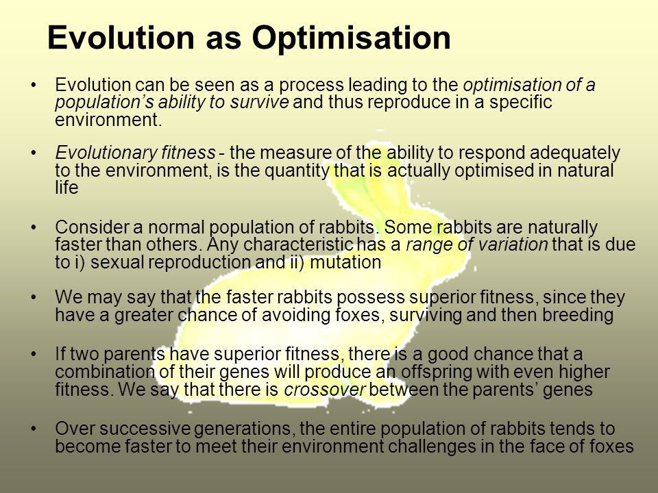 Evolution as Optimisation