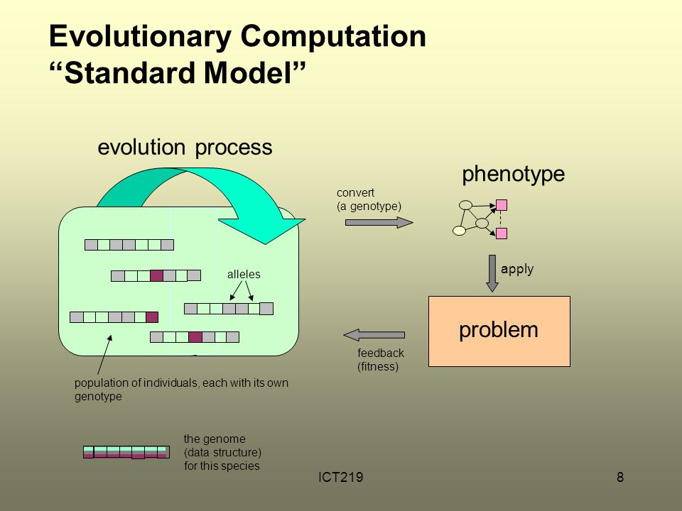 Evolutionary Computation Standard Model