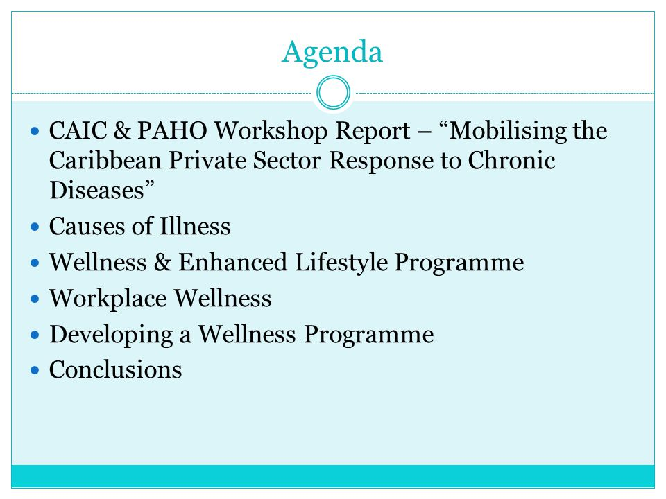 Agenda CAIC & PAHO Workshop Report – Mobilising the Caribbean Private Sector Response to Chronic Diseases