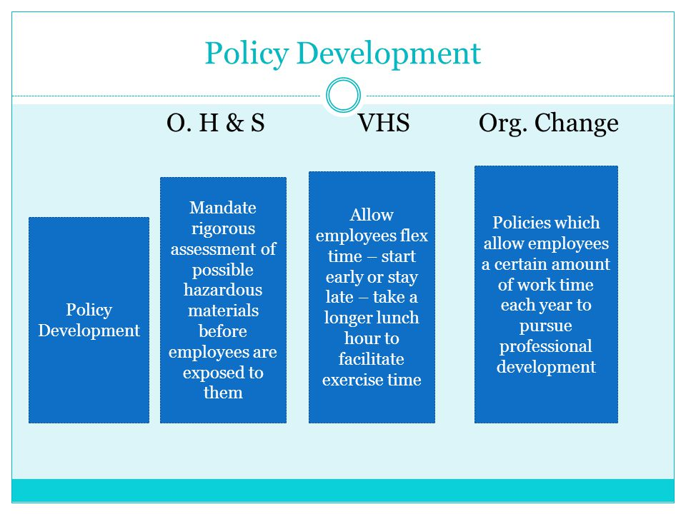 Policy Development O. H & S VHS Org. Change