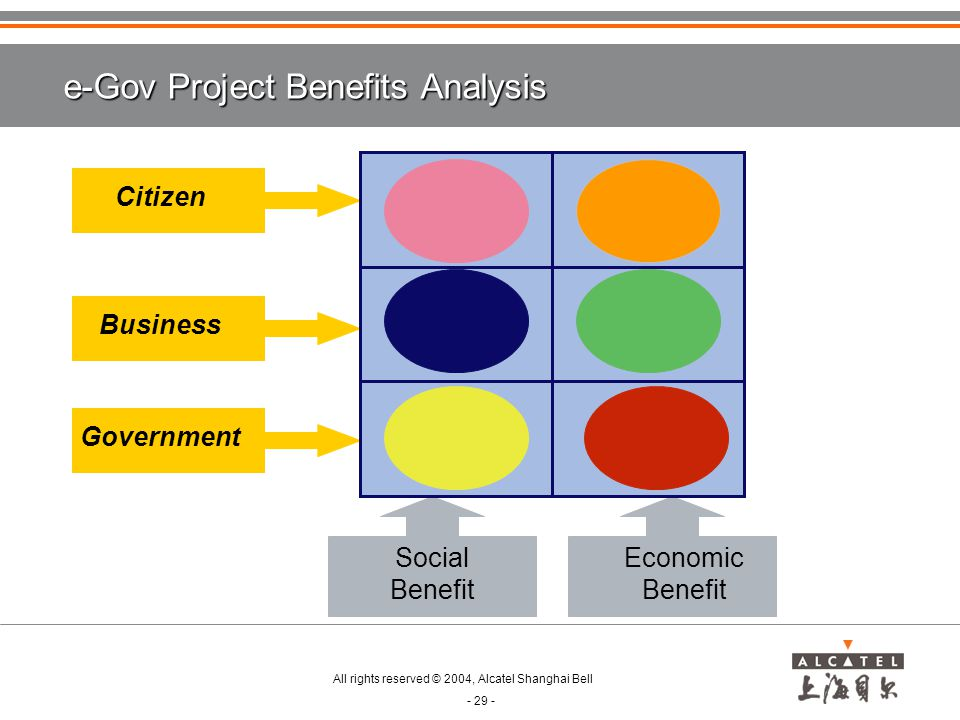 e-Gov Project Benefits Analysis