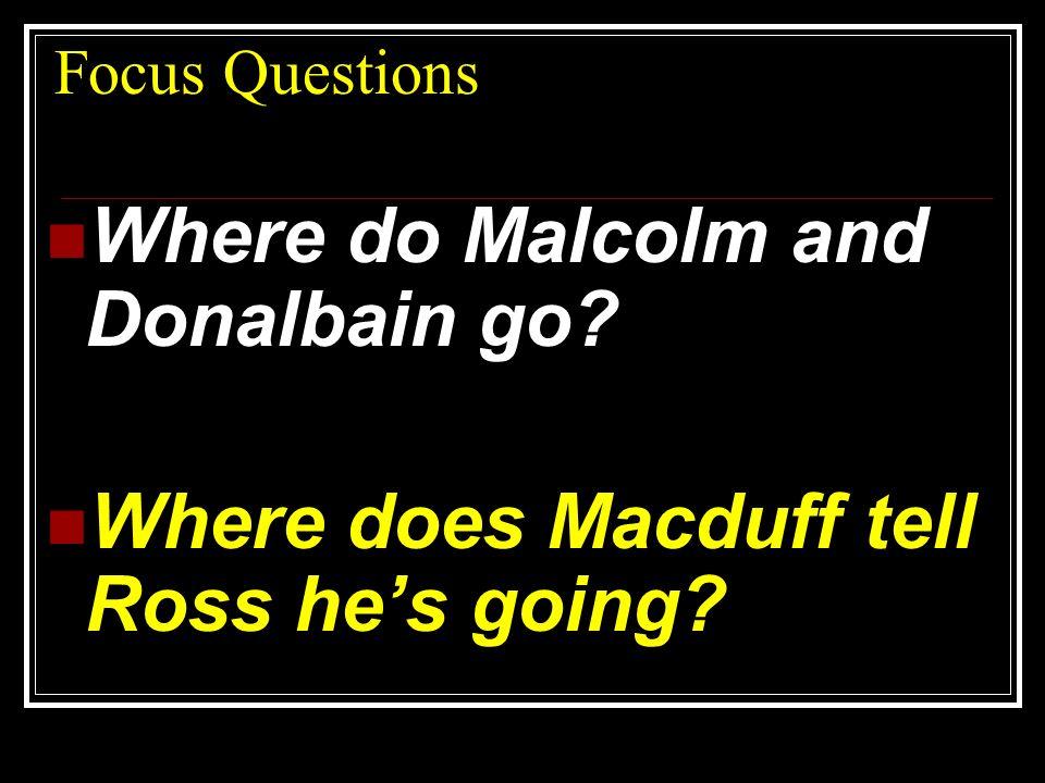Where do Malcolm and Donalbain go