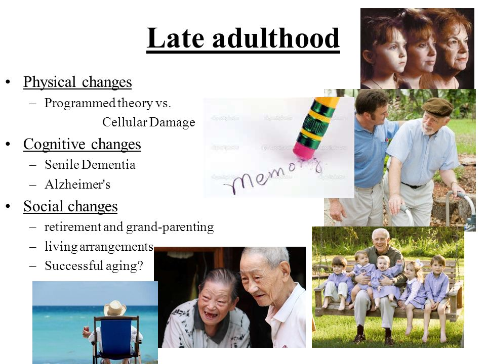 Late adulthood Physical changes Cognitive changes Social changes