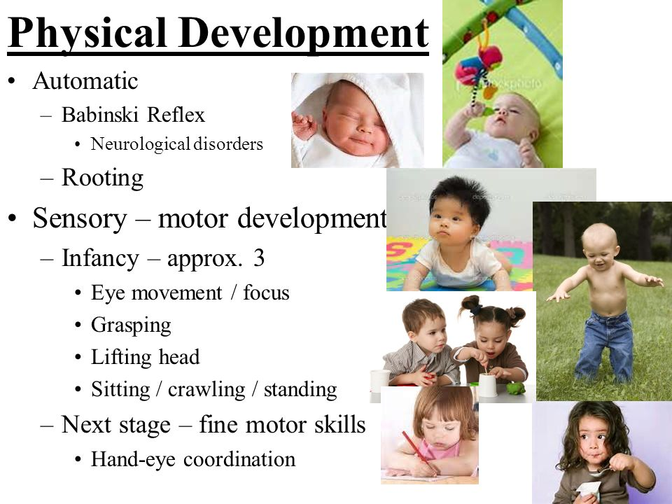 Physical Development Sensory – motor development Automatic Rooting