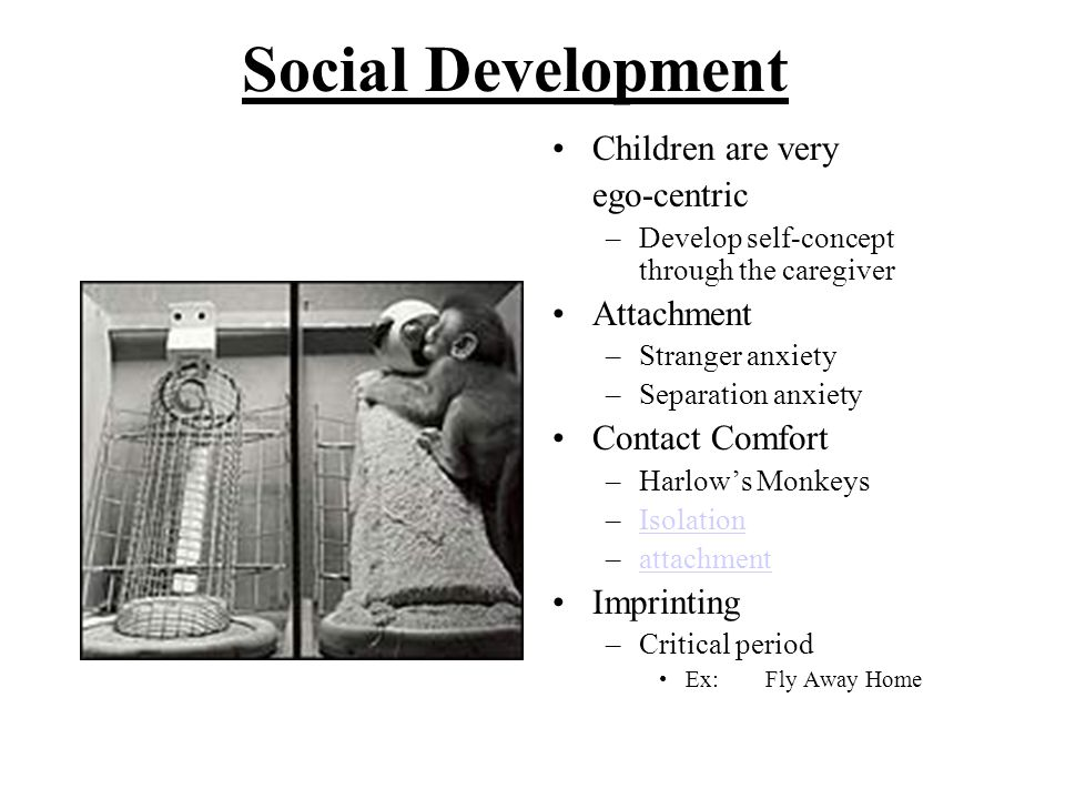 Social Development Children are very ego-centric Attachment