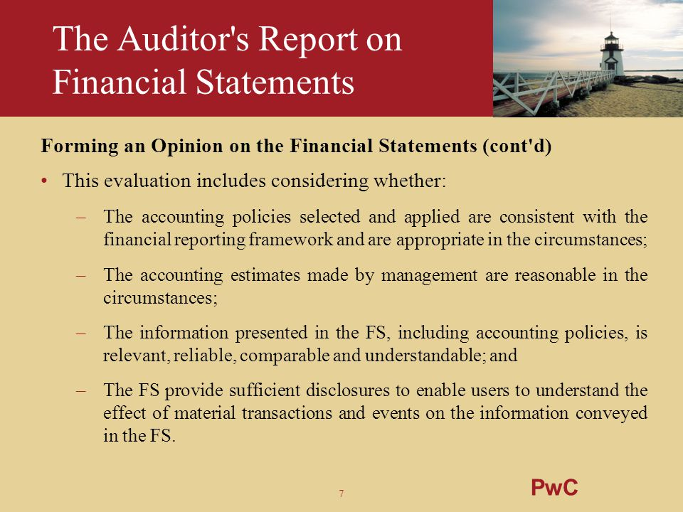 The Auditor s Report on Financial Statements
