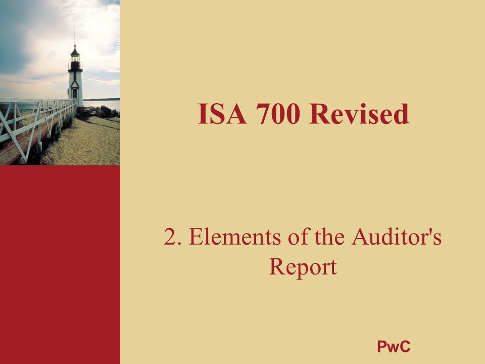 2. Elements of the Auditor s Report