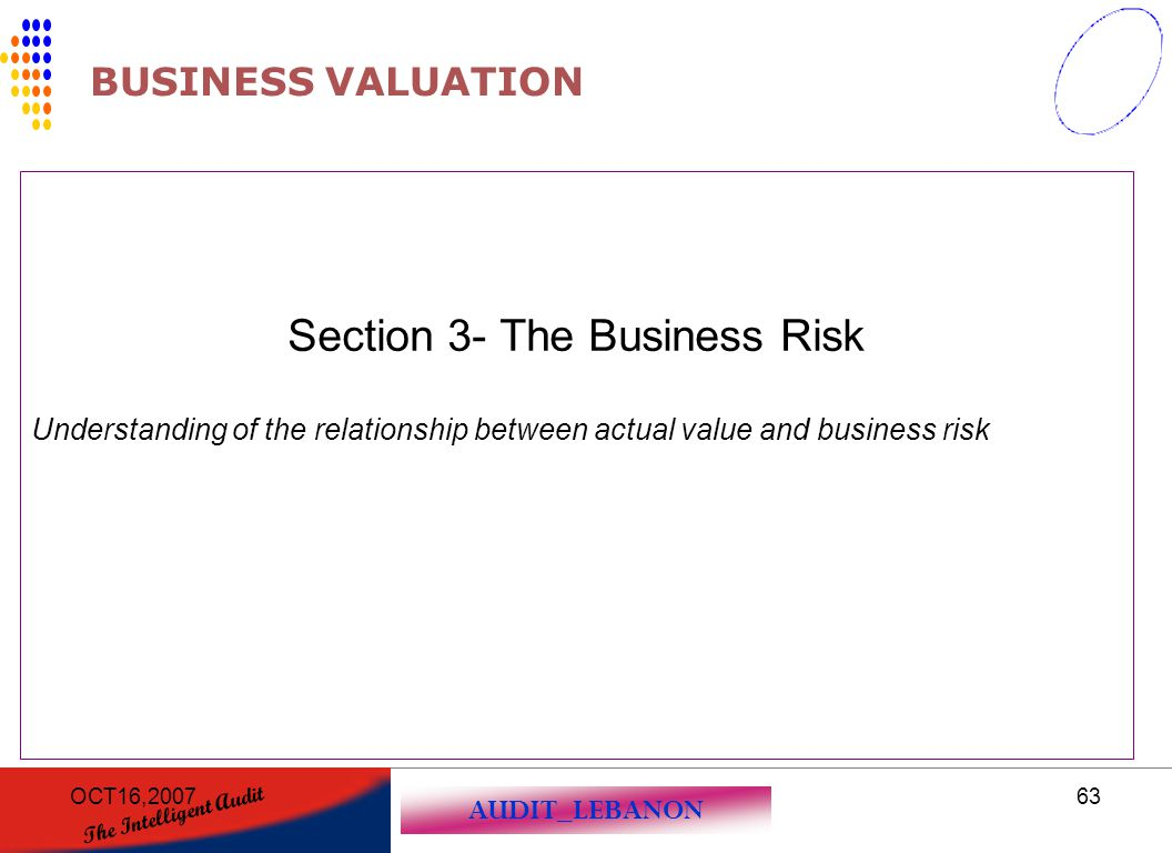 Section 3- The Business Risk