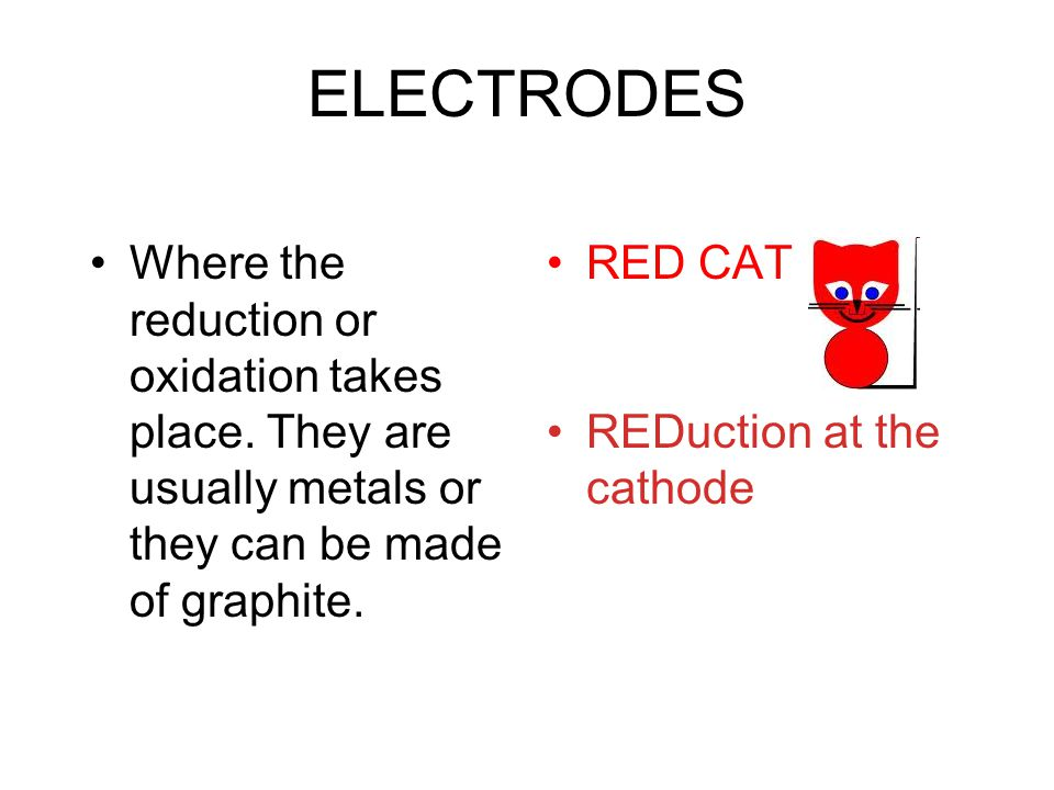 ELECTRODES Where the reduction or oxidation takes place. They are usually metals or they can be made of graphite.