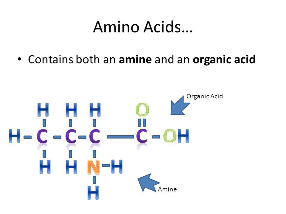 H H H O H C C C C H O H H N H H Amino Acids…