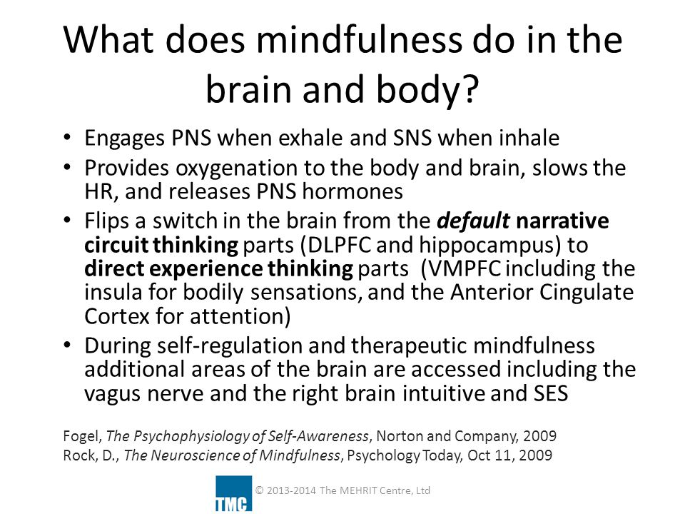 What does mindfulness do in the brain and body