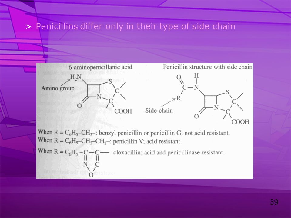 Penicillins differ only in their type of side chain