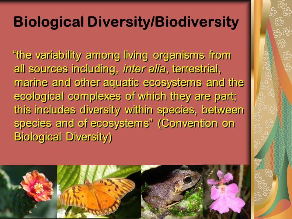 Biological Diversity/Biodiversity