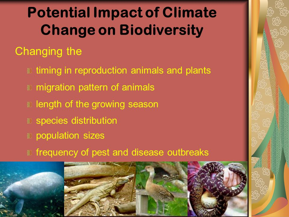 Potential Impact of Climate Change on Biodiversity