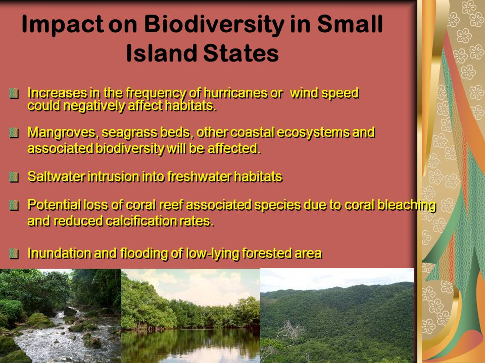 Impact on Biodiversity in Small Island States