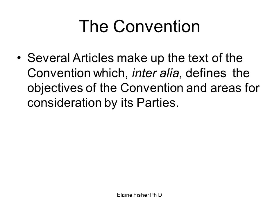 The Convention