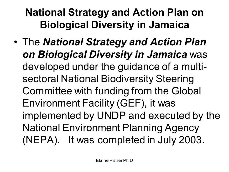 National Strategy and Action Plan on Biological Diversity in Jamaica