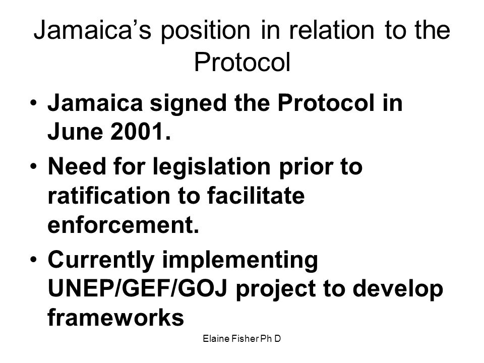 Jamaica's position in relation to the Protocol