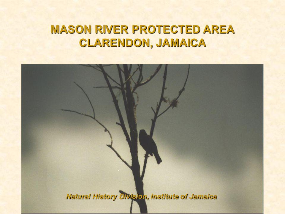 MASON RIVER PROTECTED AREA CLARENDON, JAMAICA