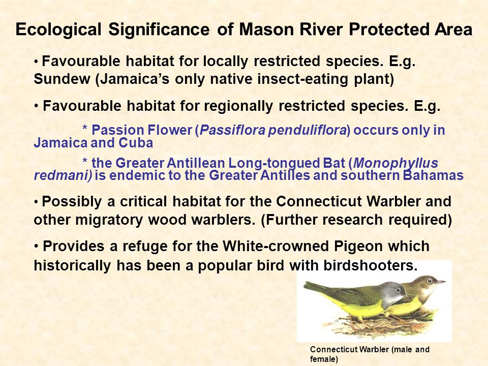 Ecological Significance of Mason River Protected Area