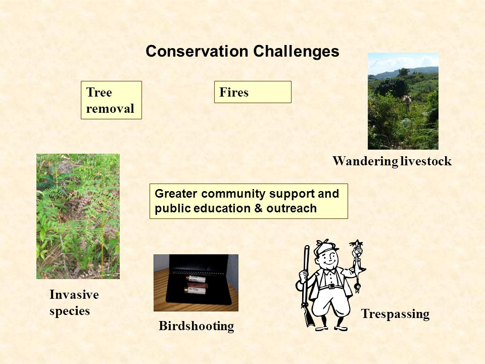 Conservation Challenges