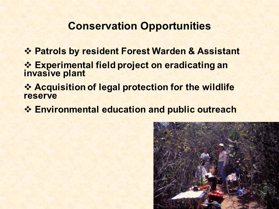 Conservation Opportunities