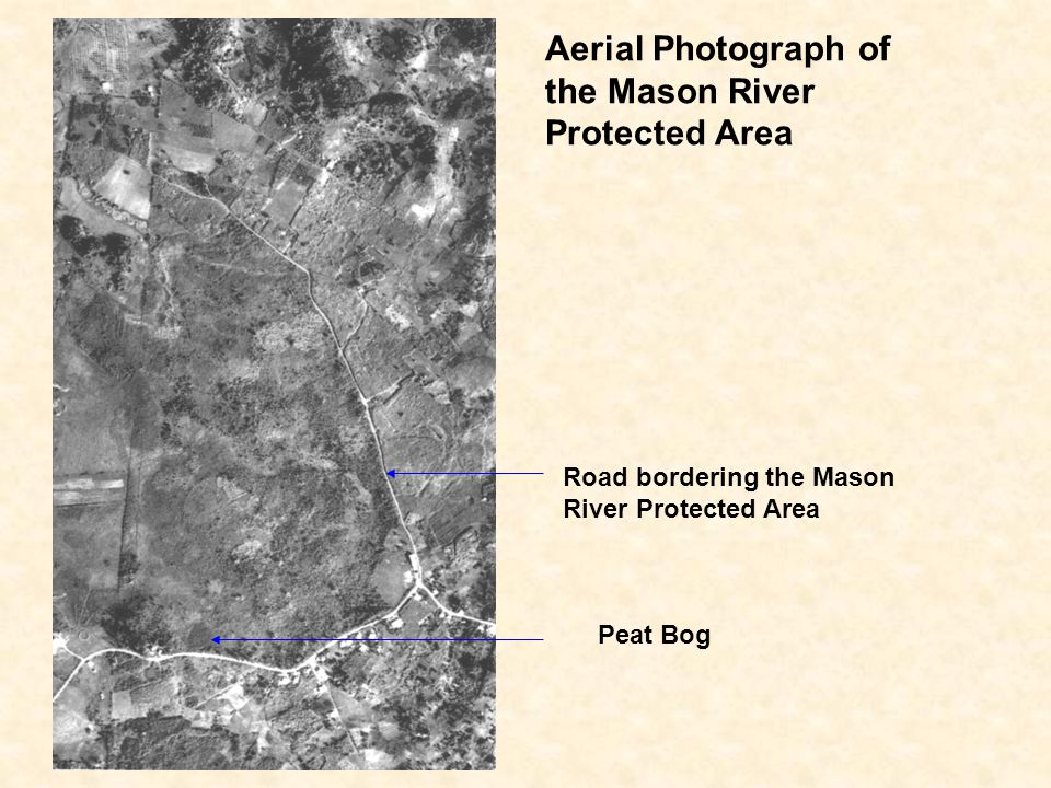Aerial Photograph of the Mason River Protected Area