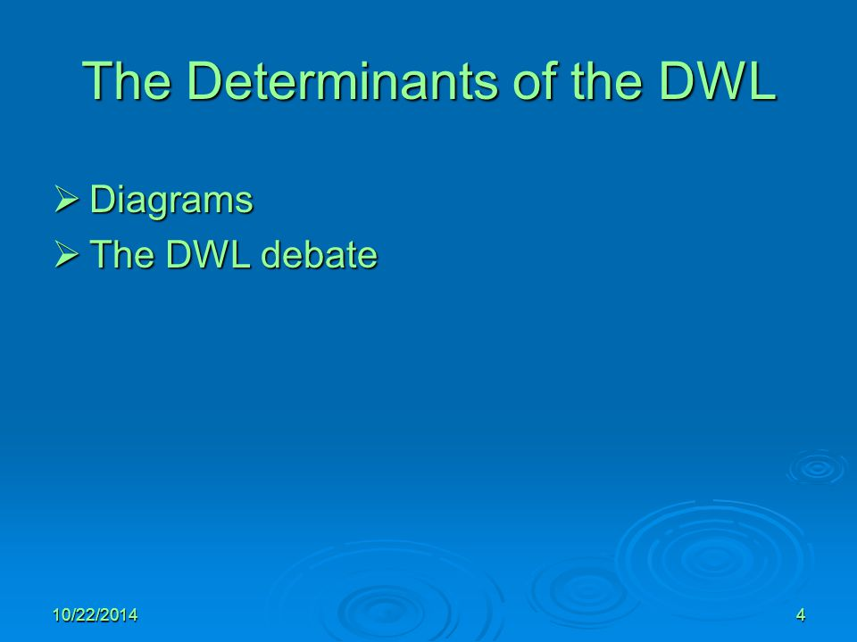 The Determinants of the DWL