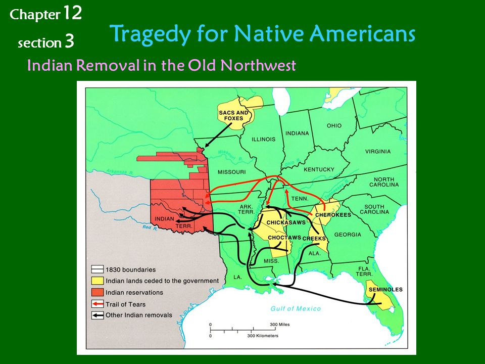 Tragedy for Native Americans Indian Removal in the Old Northwest