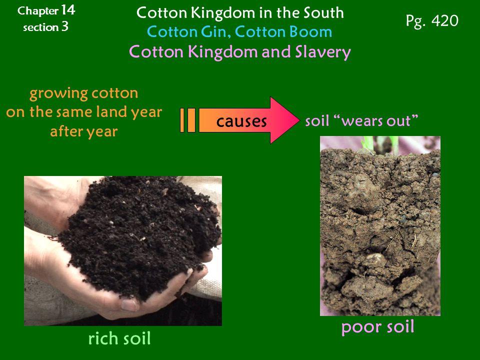 causes poor soil rich soil