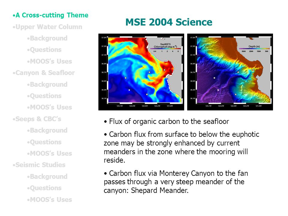 MSE 2004 Science Flux of organic carbon to the seafloor