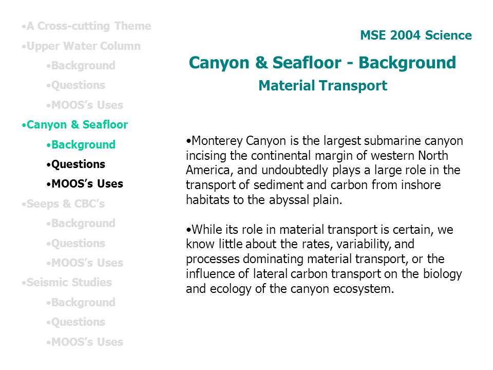Canyon & Seafloor - Background