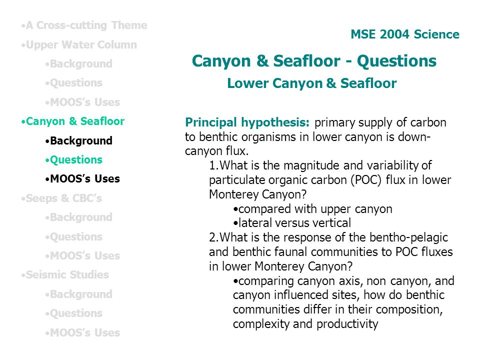 Canyon & Seafloor - Questions Lower Canyon & Seafloor