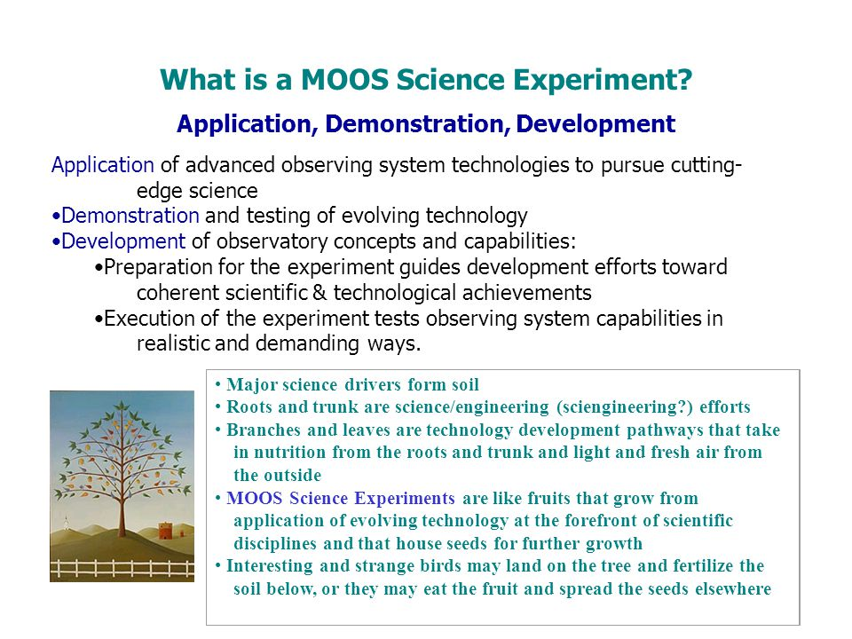 What is a MOOS Science Experiment
