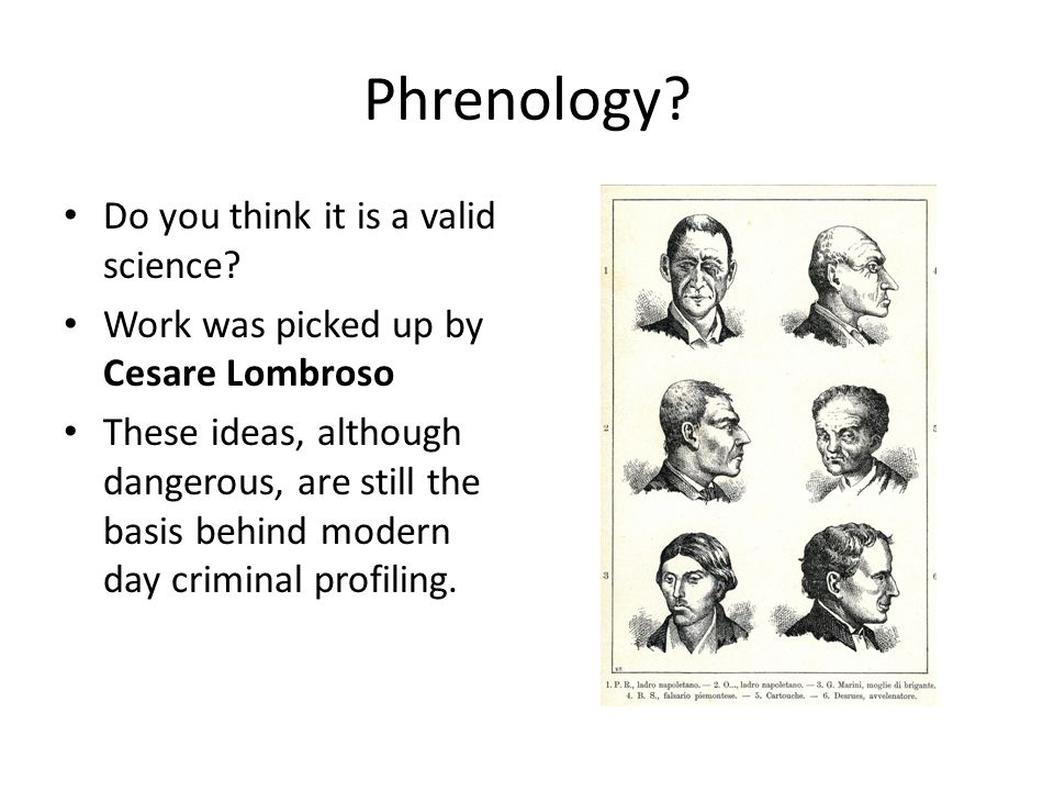 Phrenology Do you think it is a valid science