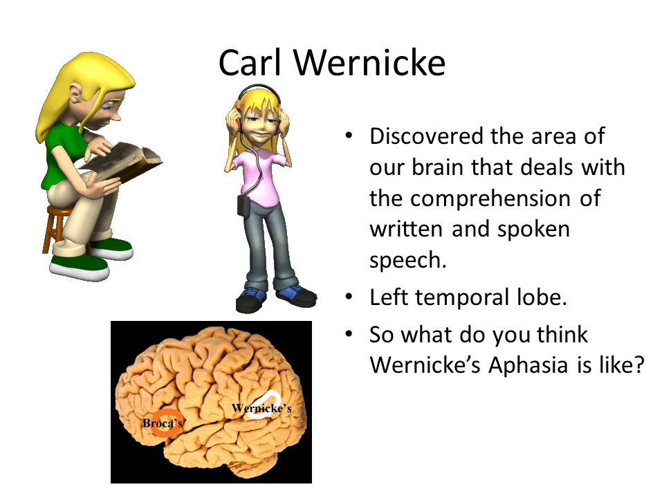 Carl Wernicke Discovered the area of our brain that deals with the comprehension of written and spoken speech.