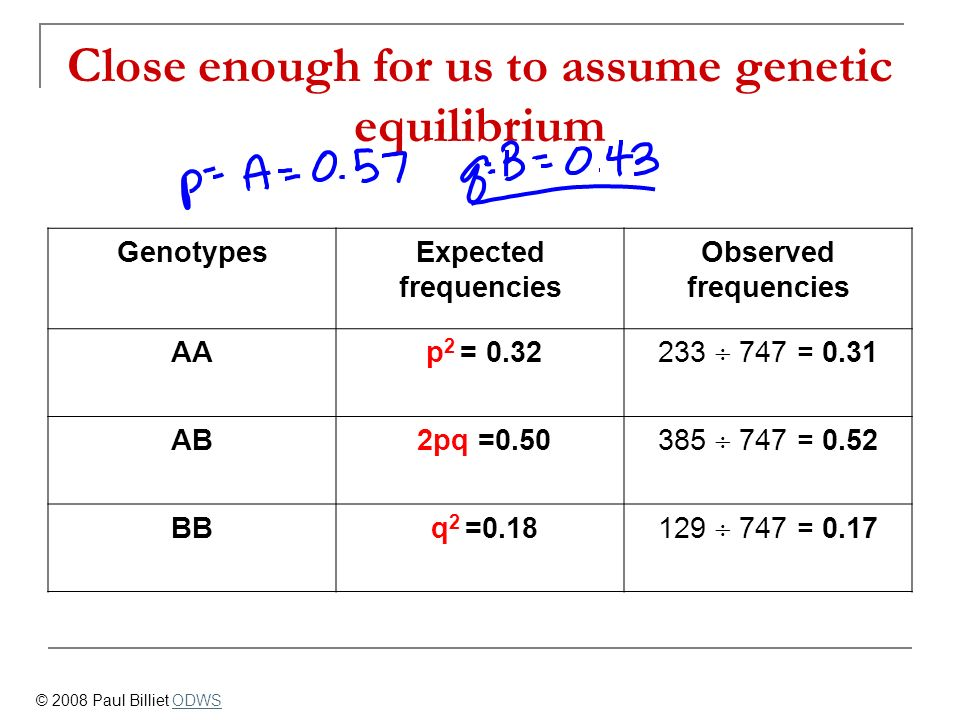 Close enough for us to assume genetic equilibrium