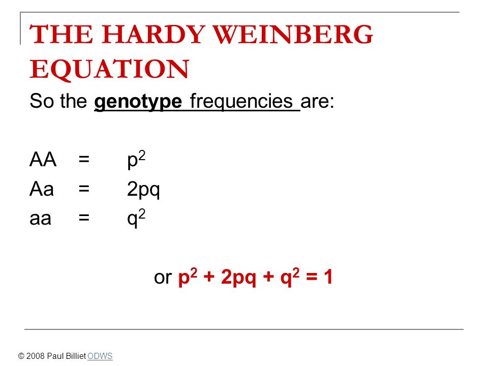 THE HARDY WEINBERG EQUATION