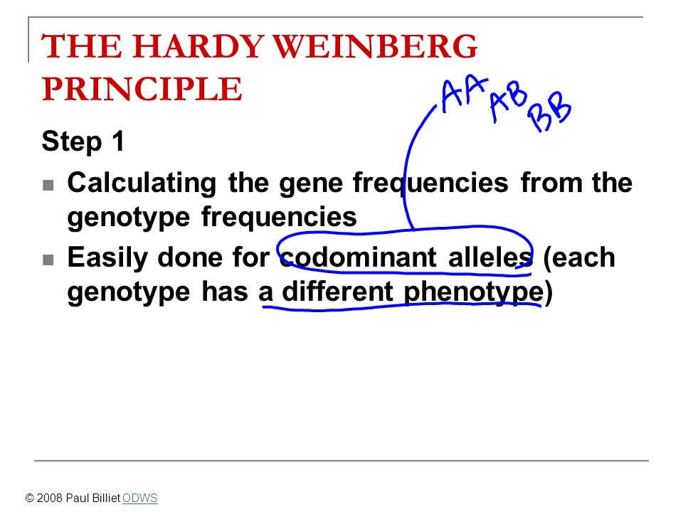 THE HARDY WEINBERG PRINCIPLE